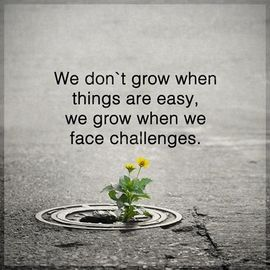 Preview_we_grow_when_we_face_challenges