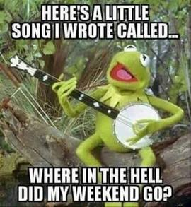 Preview_kermit_where_in_the_hell_did_my_weekend_go