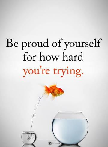 Wall_be_proud_of_how_hard_you_are_trying