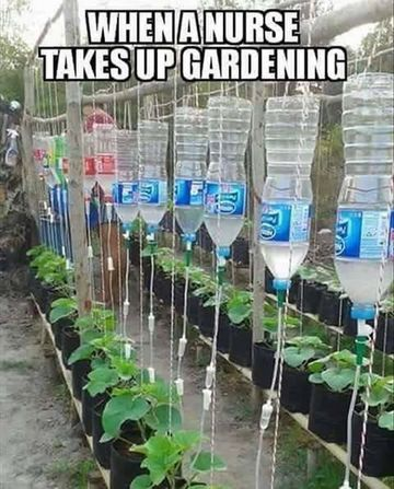 Wall_when_a_nurse_takes_up_gardening