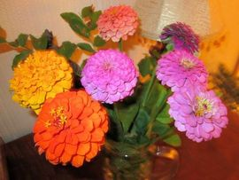 Preview_vaseofzinnias