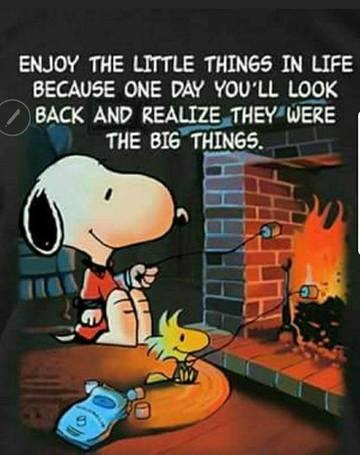 Wall_snoopy_enjoy_the_little_things