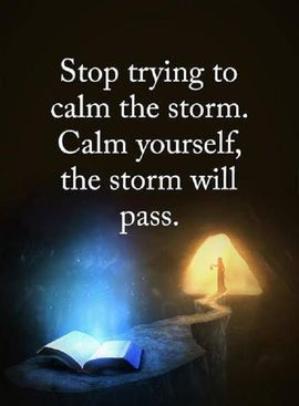 Preview_stop_trying_to_calm_the_storm_and_calm_yourself