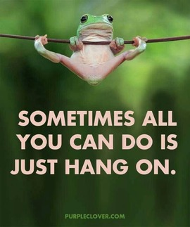 Preview_sometimes_all_you_can_do_is_hang_on