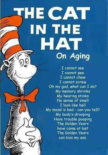 Wall_cat_in_the_hat