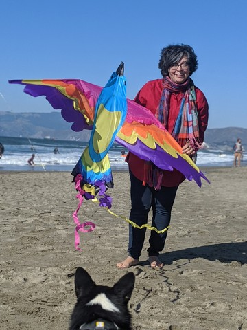 Wall_flying_a_kite_in_ca