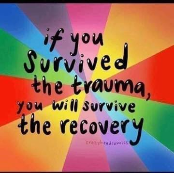 Wall_if_you_survived_the_trauma_you_will_survive_the_recovery