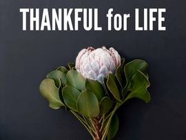 Preview_thankful_for_life
