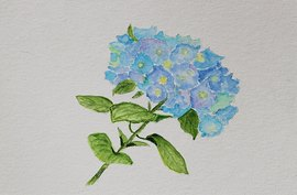 Preview_hydrangea_by_jane_6-29-20