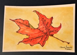 Preview_fall_leaf_9-1-20