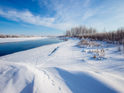 Winter Scene, Lesser Slave River, Alberta