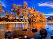 Blakiston creek