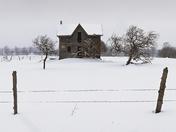 Abandoned Farmhouse/Rob Roy/Blue Mtns. On