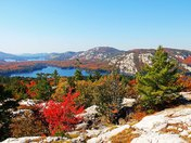 Fall Color White Mountains