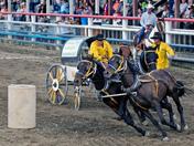 Wagon Race