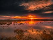 Prairie Sunset 2415_2013