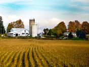 Rural Qubec