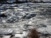 Ice formation on the Humber river