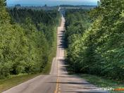 Selkirk Road