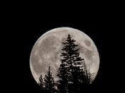 Full Moon in BC