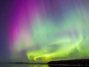 Shades of Purple, Aurora, Slave Lake, Alberta