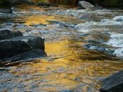 Oxtonge Rapids