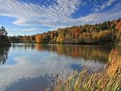 Fall at Mapleton Park, Moncton
