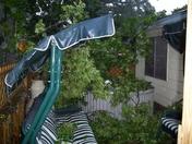 Tree Crushes Hot Tub