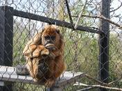 zoo day 014.jpg