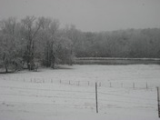 snow day 08 014.jpg