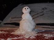 The Wristen snowman, Richland, MS