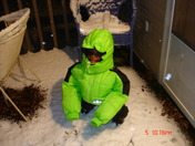 Selwyn 12-4-09 snow in MS.JPG