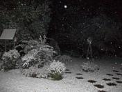 Snowfall 12-04-09 Brandon, MS