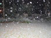 My backyard - Northeast Jackson!