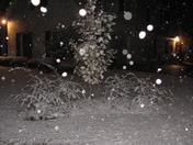 Snowing in Ridgeland, MS 029.JPG