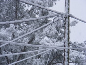 Power lines Big Snow--Clinton