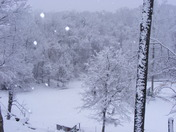 Snow in Natchez MS  - our home