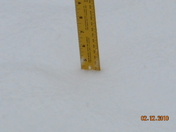4.5 inches of snow
