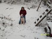 February snow 017.jpg