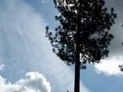 Amazing sky in Alta Sierra (Grass Valley CA)