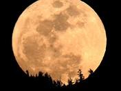 Worm Moon Rise