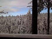 Snow at Pollock Pines