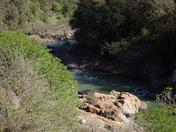 'looking ahead' Bear River
