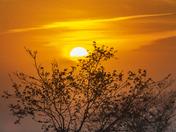 Sunrise Galt