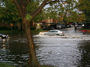 Oak Hollow Dr. Flood