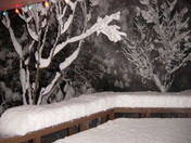 Snow in Meadow Vista