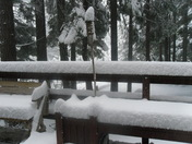 6.5 inches of snow in Dorrington