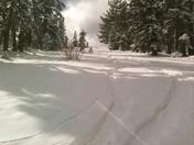 skiing top to bottom