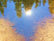 Reflection/Truckee River