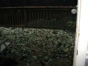 Photo from Fallston viewer